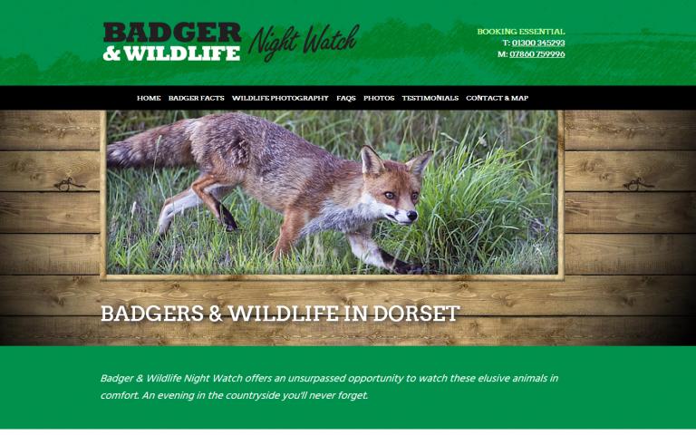 Badger & Wildlife Night Watch