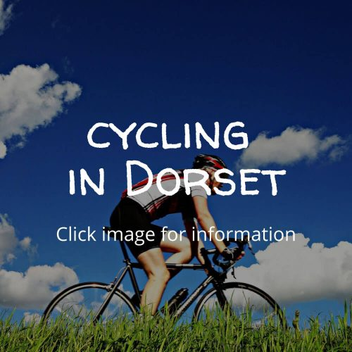 Cycling-in-Dorset