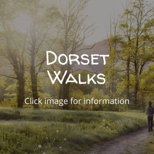 Dorset-Walks