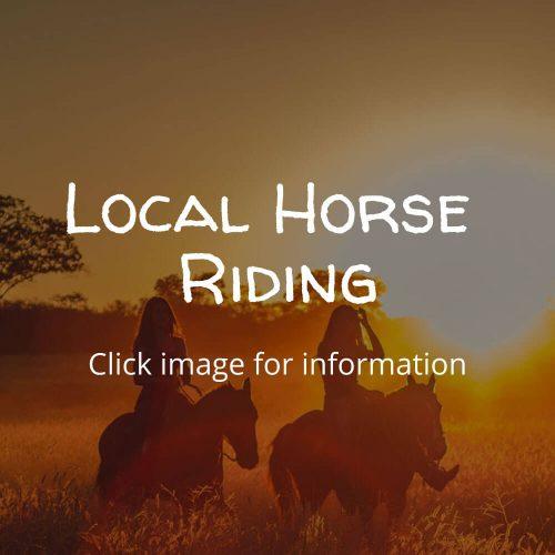 Horse-Riding-in-Dorset